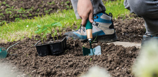 Innovative Gardening Short Course to be launched in March